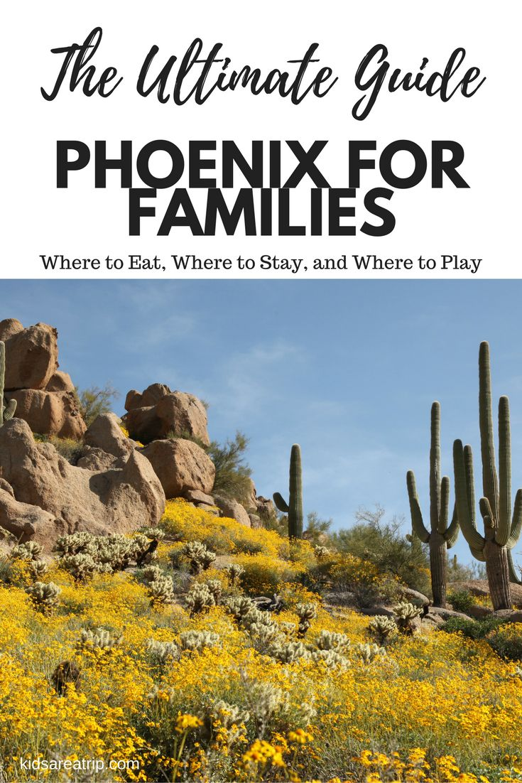 Best Family Activities in Phoenix Cheap places to travel