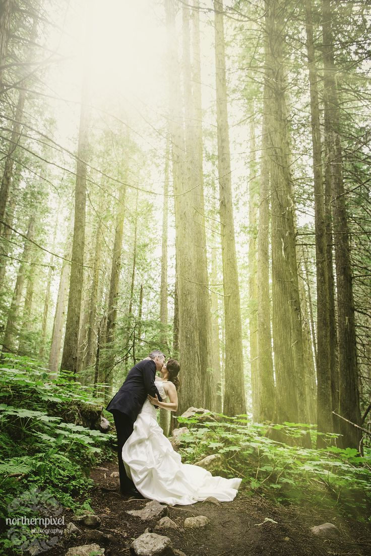 Ancient Forest After Wedding Session near Prince George British Columbia, by Northern Pixel Photography.