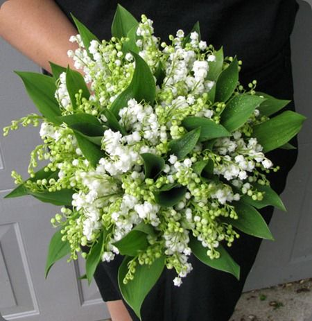 lily of the valley.  love this arrangement - so simple and elegant (designs in bloom)