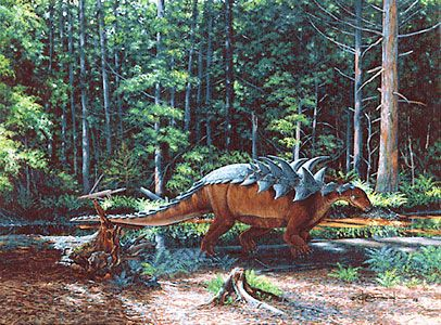 Polacanthus foxii. By Kenneth Carpenter. Is a member of the Ankylosaurid family that inhabited what is now England 130 to 125 million years ago in the early Cretaceousperiod It grew to about 5 metres (16ft) long feeding on plants and other greenery Its body typical for members of the same family of Dinosaurs was covered with armour plates and spikes its thought to be about two tonnes and had legs longer then other members of the Ankylosaurid family.