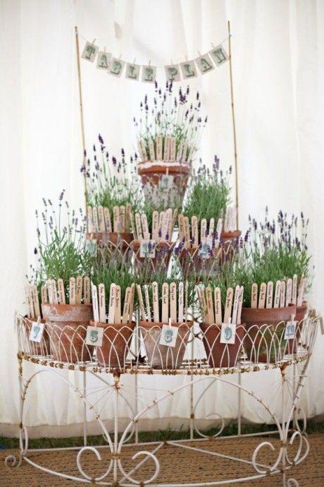 plan de table plantes