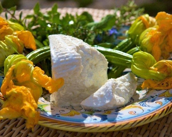 Tuscany organic farm holidays :Gourgette flowers and fresh cheese...great mix!    Vacanza in agriturismo biologico in toscana: Fiori di zucca e formaggio fresco...fantastico mix!