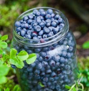 BlueberryPie: www.Scandinavianfood.org