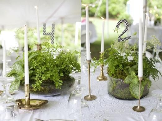 Grat idea to use potted plants as centerpieces... can be made further in advance!