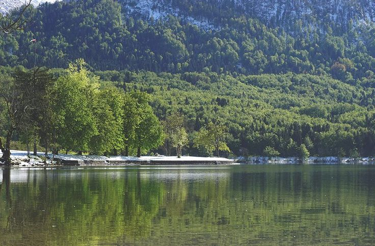 Stock Photo of Forest, Lake and Mountains. Free stock image of nature. Spring Nature