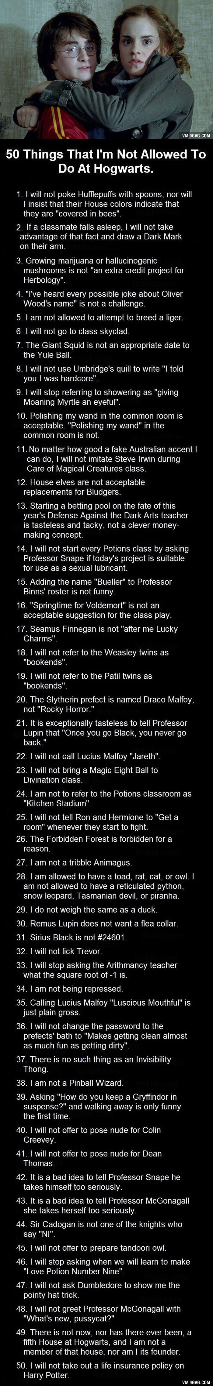 50 Things I'm Not Allowed To Do At Hogwarts. These Are Bloody Brilliant. #23 is totally something I would do....