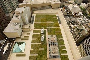 900 North Michigan Avenue – Chicago     Natura, tranquillità e relax al decimo piano di un palazzo in centro a Chicago.