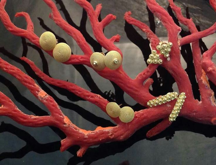 Orecchini in filigrana d'oro sul ramo di corallo di Alghero .