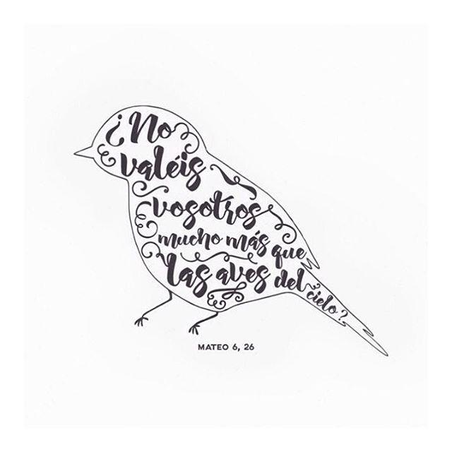 Mateo 6:25-26 Por tanto os digo: No os afanéis por vuestra vida, qué habéis de comer o qué habéis de beber; ni por vuestro cuerpo, qué habéis de vestir. ¿No es la vida más que el alimento, y el cuerpo más que el vestido?  Mirad las aves del cielo, que no siembran, ni siegan, ni recogen en graneros; y vuestro Padre celestial las alimenta. ¿No valéis vosotros mucho más que ellas?