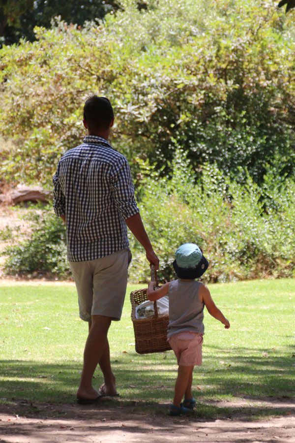 Solms Delta Wine Estate in Franschhoek is the perfect location for a family picnic in the enchanted forest.