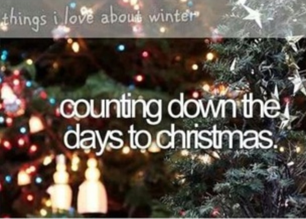 So Much Fun Counting Down The Days Till Christmas. Think It Is 22 Days Till  Christmas!