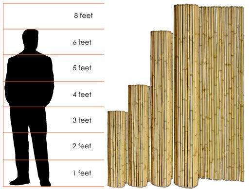 Choosing The Right Bamboo Fence Height Fences And Deck