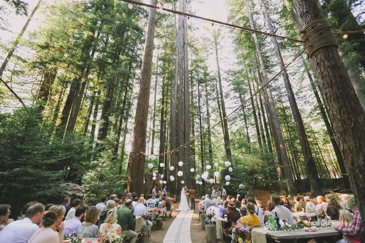 Redwoods Wedding Kevinandbri Firstdance Set Designers Donm Alyssameredith Dougmahergolfs Venue Camp Navarro Photographer Aimandarrow