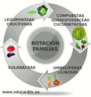 Rotaci n de cultivos por familias de hortalizas huerto Rotaciones de cultivos ecologicos