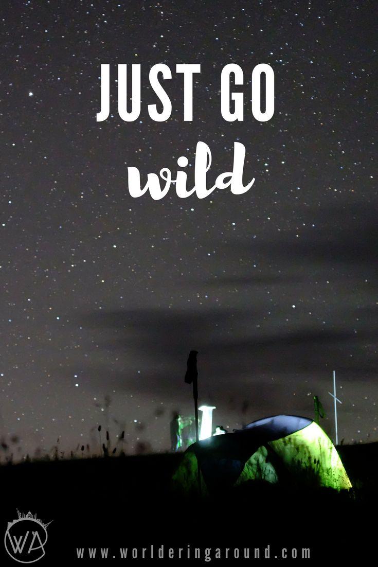 Just go wild!