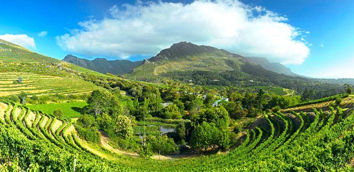 Eagles' Nest Winery, Constantia
