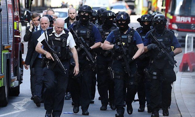 What is the truth about police numbers and the war on terror?