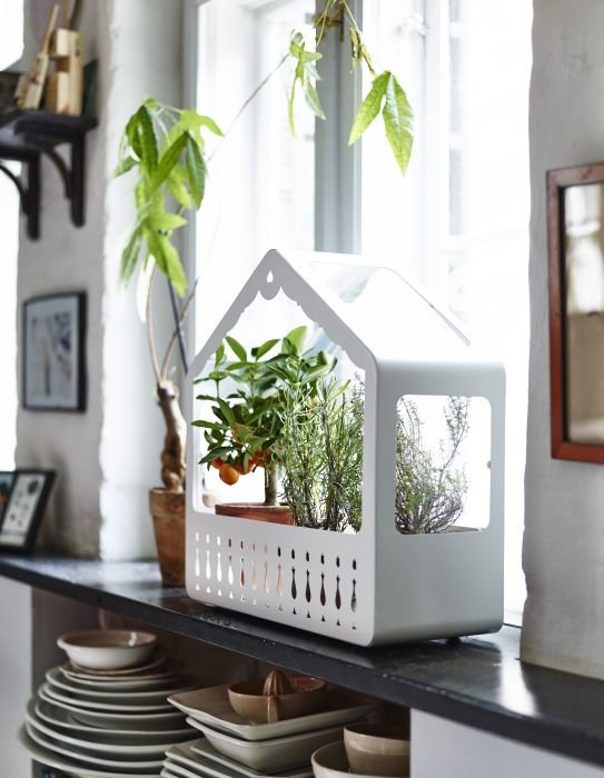 Make Any Space A Little Bit Greener With The Help Of IKEA PS 2014 Greenhouse
