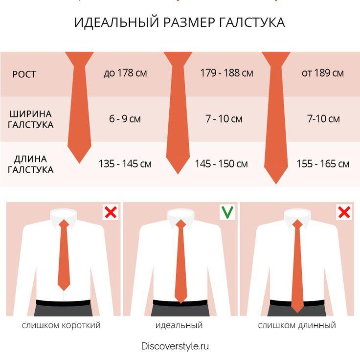 идеальная длина галстука инфографика