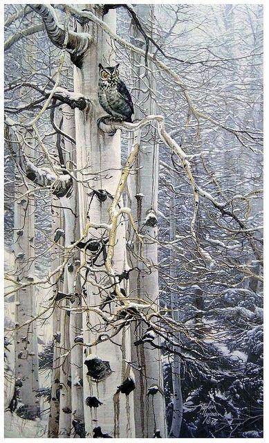 Owl in tree...pretty