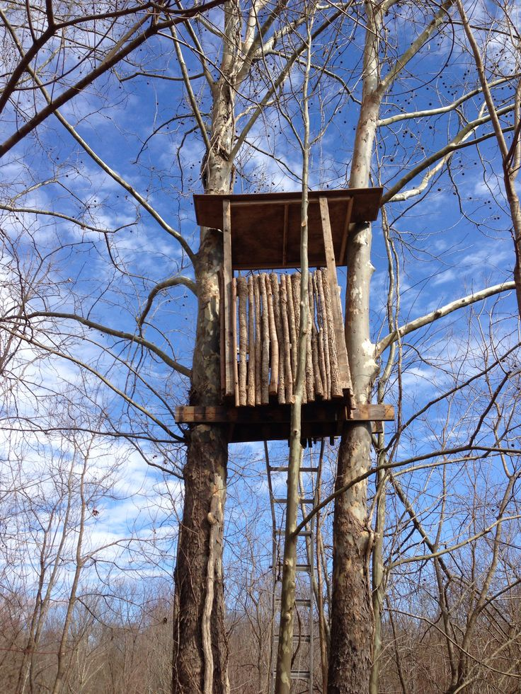 Deer Stand One Of These Days Deer Hunting Blinds