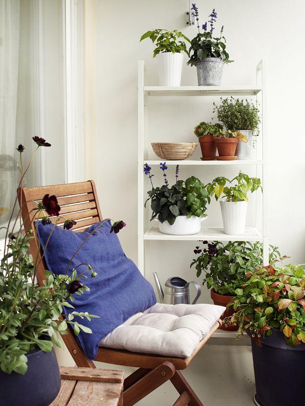 Witte stellingkaart. Ruimte voor nog meer planten op het balkon. #balkon #cozy_balcony #inspiratie #balkon_inspiratie #klein_balkon #zomer #balkon_inrichten | www.balkonafscheiding.nl