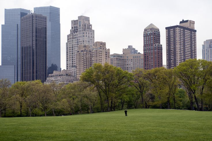 One Man, One Park - One man standing in Central Park's Sheep Meadow