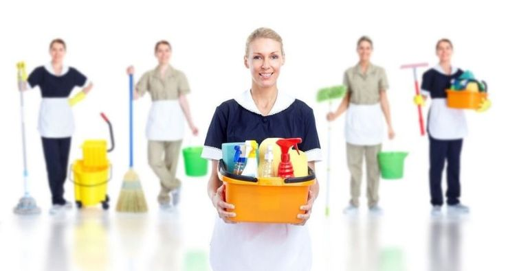 Myom cleaning services are specialists when it comes to carpet cleaning, but we don't stop at carpets!  #CarpetCleaning  http://www.myomcleaningservices.com.au/carpet-steam-end-of-lease-bentleigh/