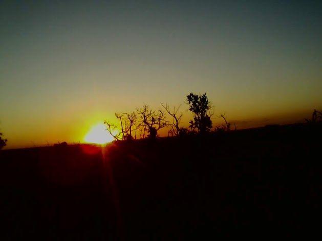 amo o sol como amo minha  vida