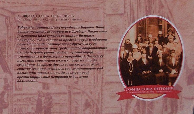 #SofijaSonjaPetrović (1894-1965) /Izvor: Izložba na trgu/ #zrenjanin #nagybecskerek https://flii.by/file/1hha5zo3pji/