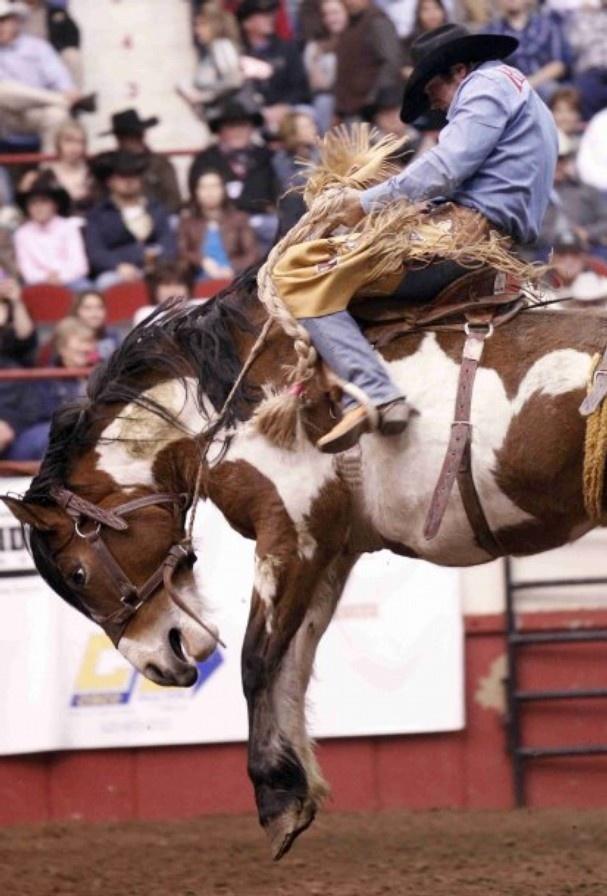 Cynthia Esparza Standard Times Ty Atchison Rides Resistol