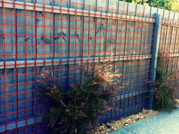 Reo mesh fence screen green wall facade pinterest