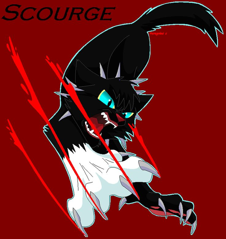 Warrior Cats Kit To Leader Bloodclan: 16 Best RavenPaw And Smudge Images On Pinterest