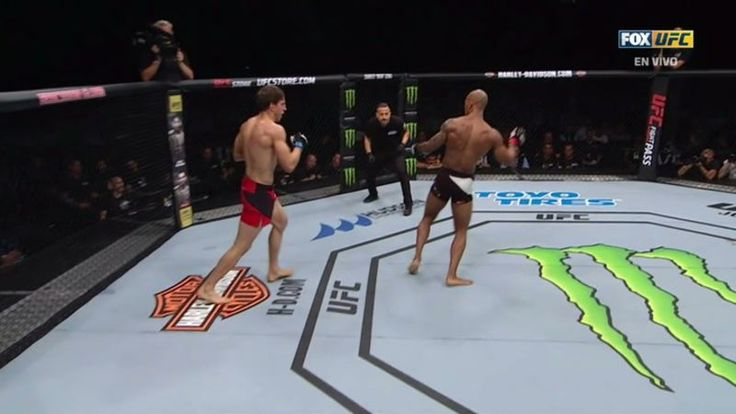 Serbian Bojan Velickovic took a third-round win by TKO when his counterpunch left Sweden's Nico Musoke so brain-scrambled that he stumbled around the ring for several moments at today's UFC event in Stockholm. (Velickovic later landed a punch straight to Musoke's forehead before referee Kevin Sataki got around to ending the bout.)