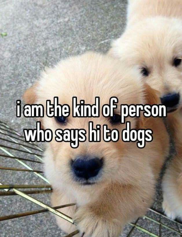 Always Dogs Cute Animals Dog Quotes