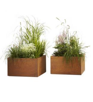 Pflanzkübel aus Cortenstahl bepflanzt mit Gras und Wildblumen - für eine moderne #gartengestaltung