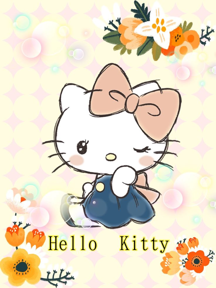 Hello Kitty | 내ㄲᆞㅣ