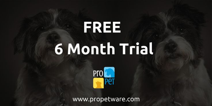 Sign up with ProPet Software in the month of August to run your boarding kennel or dog daycare facility and receive a Free 6 month trial.
