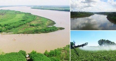 Confirman+que+la+cuenca+del+Paraná+está+contaminada+con+glifosato