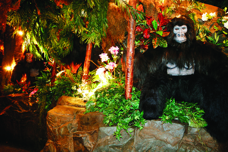 Gorilla Mountain awaits in the Rainforest Cafe restaurant in London. Our life-like animals will make you feel like you're in the Amazon for real! Bamba the Gorilla and Ozzie the Orangutan would  love you to join their cheeky monkey family.   www.therainforestcafe.co.uk