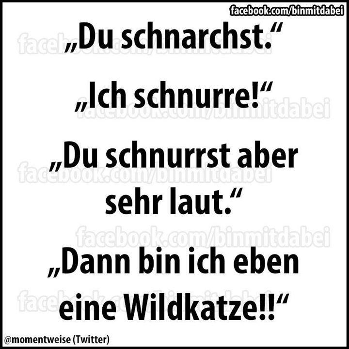 Hmmm MEINE wildkatze
