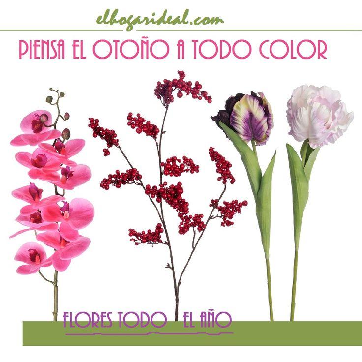 En 'El hogar ideal' el otoño también es la estación de las flores. En nuestra tienda te ofrecemos un colorido total y las más variadas formas y estilos. http://elhogarideal.com/es/34-flores-y-plantas