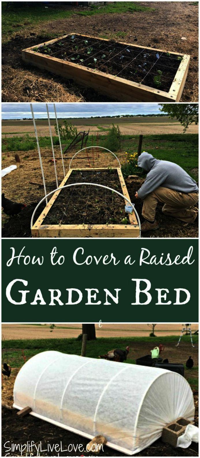 Pin On Raised Garden Beds