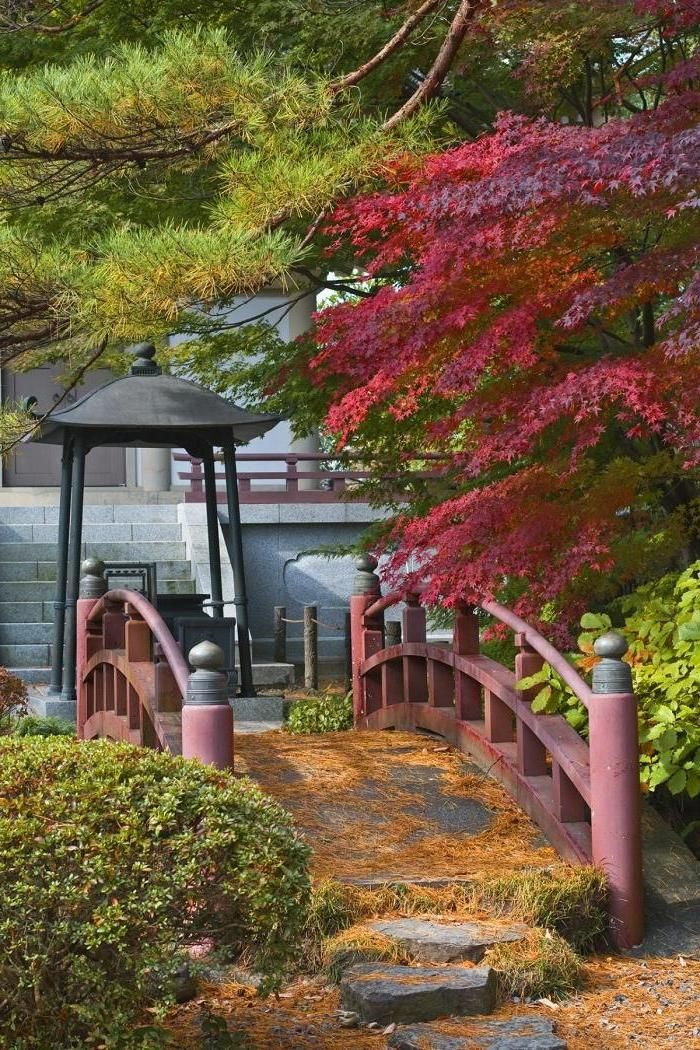 japanese garden with a traditional bridge located rinoji temple garden from 123 royalty free webpage has a convenient pin it button
