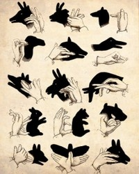 shadow puppets in the tent