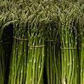 foods high in B1 website - Top 10 Foods Highest in Thiamin (Vitamin B1)