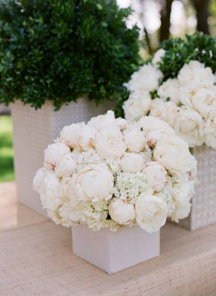 pretty wedding flowers :) peonies, roses, and babies breath.