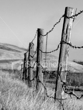 Barb Wire Fence Clip Art Barbed Wire Fence Photo Credit
