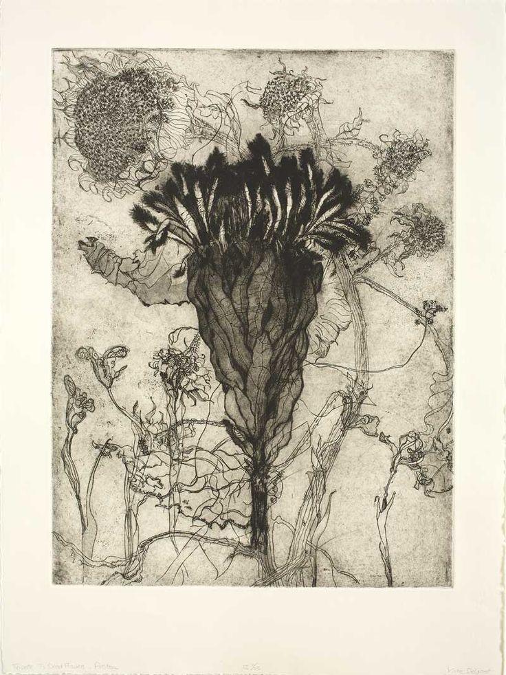 Protea, Katie Degroot