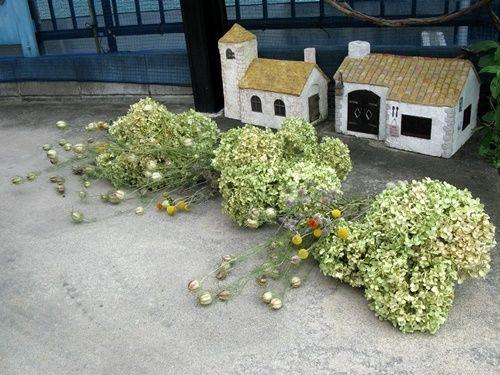 アナベルドライ たくさん出来ました 紫陽花 リース ハンドメイド 鉢植え